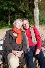 glückliches paar genießt die sonne im wald
