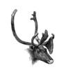 Reindeer - Trophée : Renne sauvage