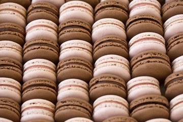 Strawberry and chocolate macarons
