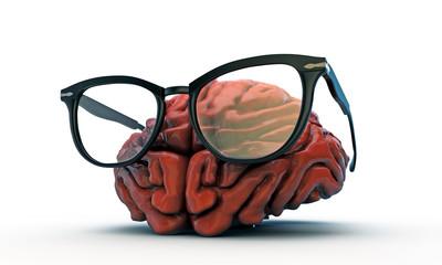 big brain with black glasses
