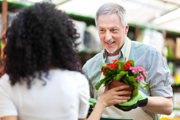 Woman choosing flowers in a greenhouse with an employee