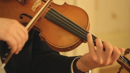 Violinist. Professional musician playing the violin.