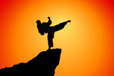 Woman karate in the sunset, silhouette