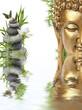 reflets de Bouddha