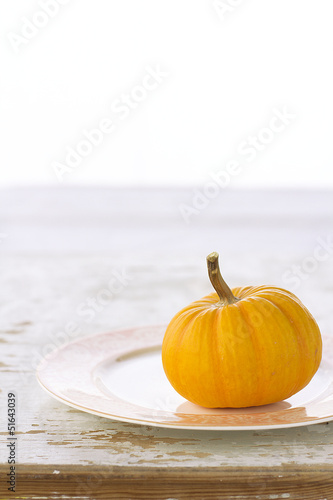 Yellow pumpkin on plate
