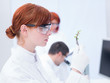 laboratory plant analysis