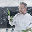 scientist analyzing leafs