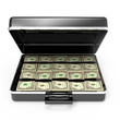 US Dollars in briefcase