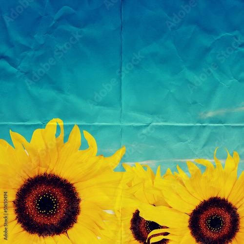 sunflowers on paper