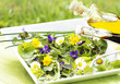 Frühlingskräuter-Salat