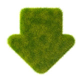 Grass down arrow icon