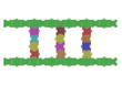 Merdiven renkli puzzle