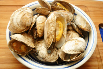 A Huge Plate of Steamed Clams