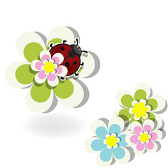 Beautiful summer background with ladybug and flowers