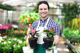 Greenhouse worker holding flower pots