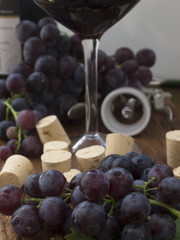 dark grapes with corks