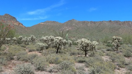 Panning Shot of Desert and Mountains