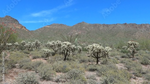 Panning Shot of Desert and Mountains