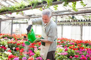 Worker watering plants