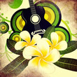Grunge plumeria flowers and guitar