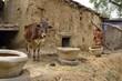 fattoria in India