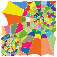 cobweb colorful vector
