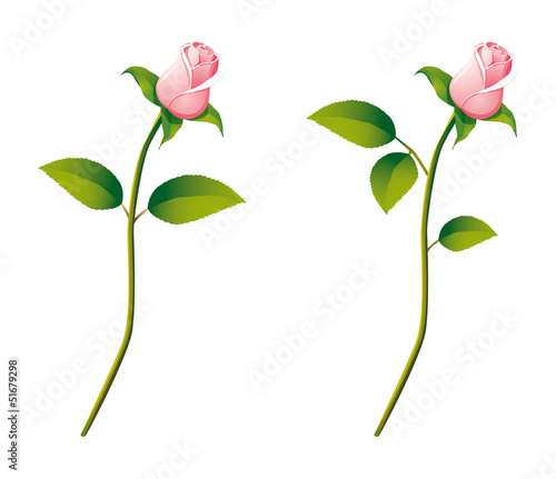 Detailed vector rose flower in cartoon style