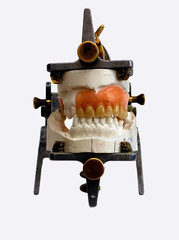 dental lab denture