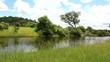 Natur pur - idyllischer Fluss