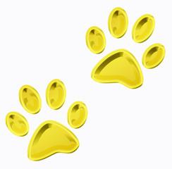 golden pet paws
