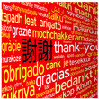 """THANK YOU"" Card (chinese languages translation tag cloud icon)"