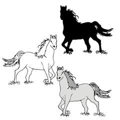 horse standing on grass vector