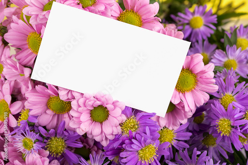 mother day greeting, blank