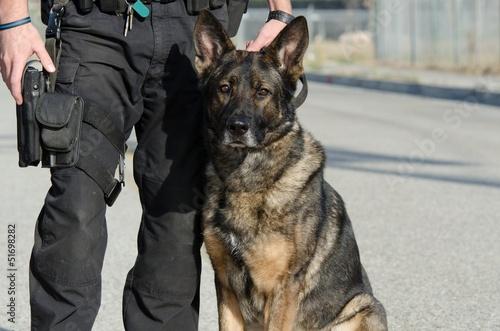 Leinwandbild Motiv Police Dog