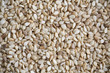 Sesame grains