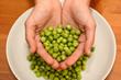 Hands Showing Fresh Green Beans