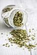 Chives - erba cipollina