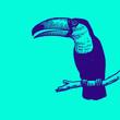 Toucan tatouage bleu