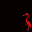 Ibis rouge et noir