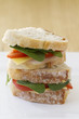 Healthy sandwich vertical