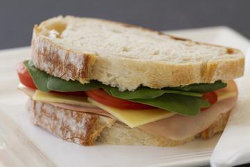 Healthy sandwich on blur background