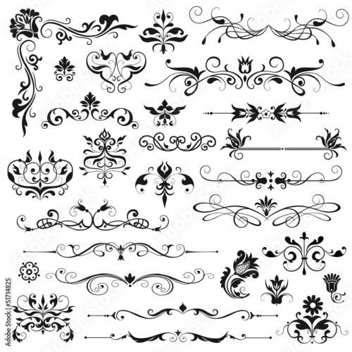 Set of vector floral elements for design