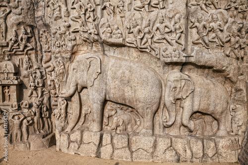 Elephants rock in Mamallapuram
