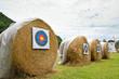 target archery in field