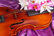 Classical Violin On Fabric Bac...