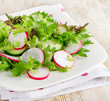 Fresh salad with lettuce, cucumber  and radish