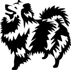 dog - german spitz