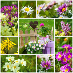 Spring garden collage - Frühlingsgarten Collage
