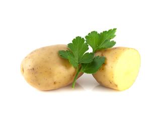 Potato sliced half and green parsley isolated