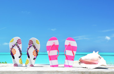 Two pairs of flip-flops and a shell